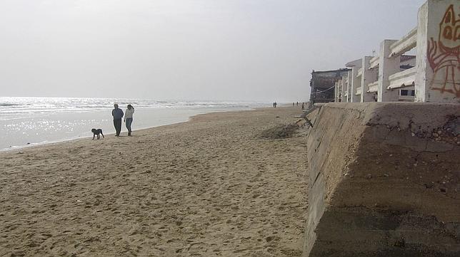 La invasión de medusas por el cambio climático podría llevar al cierre de playas