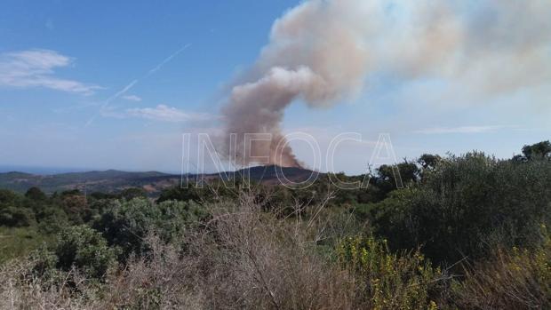 Imagen del Infoca en la que se ve la columna de humo de este incendio.