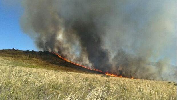 Fuego en la el municipio granadino de Arenas del Rey