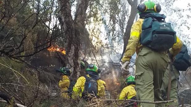 Efectivos del Infoca actuando en el incendio de Estepona