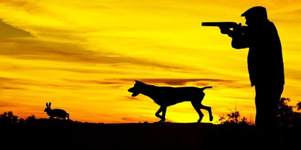 La temporada de caza en Andalucía comenzará el 9 de agosto con la apertura  del periodo hábil del conejo