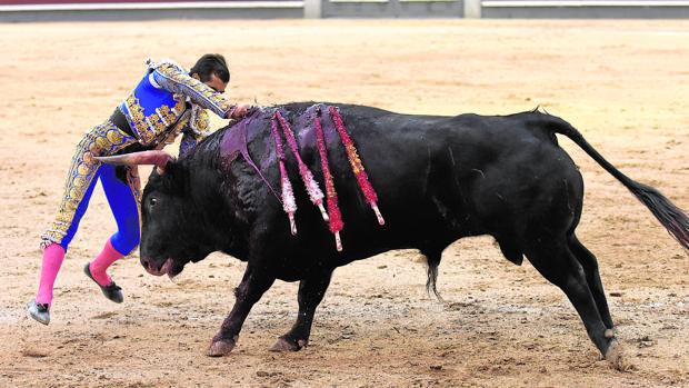 Joselito Adame entra a matar sin muleta al último toro de la desigual corrida de El Torero