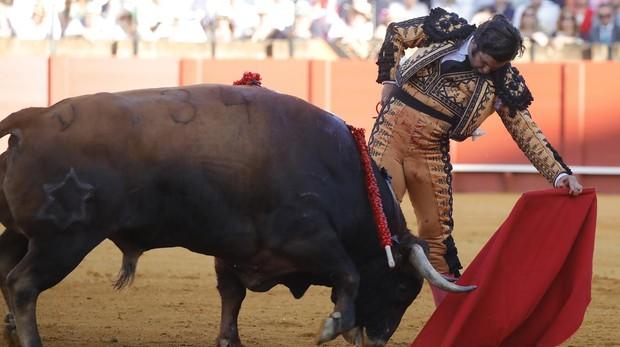 Morante de la Puebla en la plaza de toros de la Real Maestranza