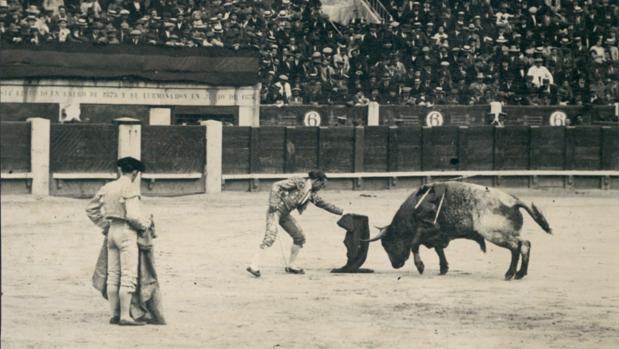 Domingo Dominguín, pasando de muleta en la plaza de toros de Madrid