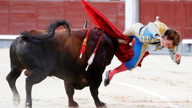 Momento en el que el toro «Santanero I» levanta por los aires a Román