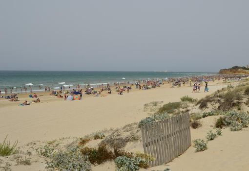Playas de Cádiz: Calas de Roche y otros encantos de la costa gaditana
