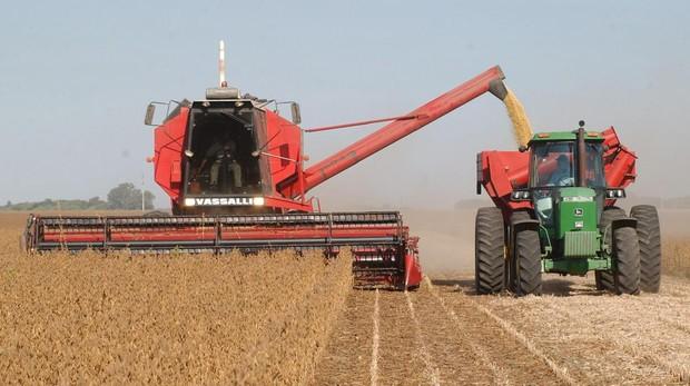 Una cosechadora deposita leguminosas en la tolva de un tractor