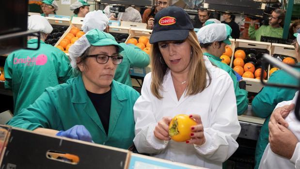La candidata del PSOE, Susana Díaz, conversa con una trabajadora en una visita a una cooperativa de Lepe