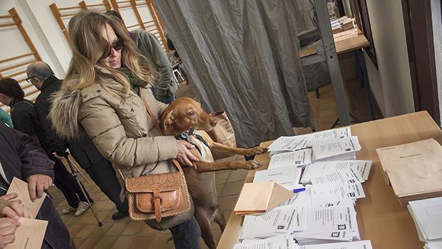 Resultados Elecciones Generales 2019 en Palma capital