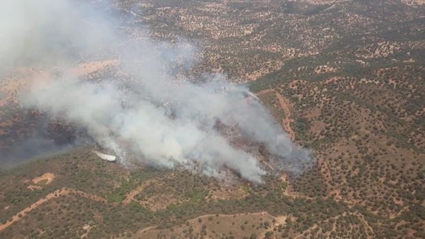 Imagen del incendio en el paraje Vega del Trabuco