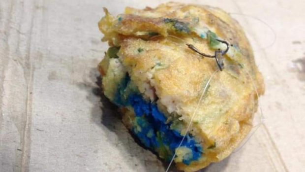Imagen de la porción de tortilla envenenada que el denunciado ofreció al perro