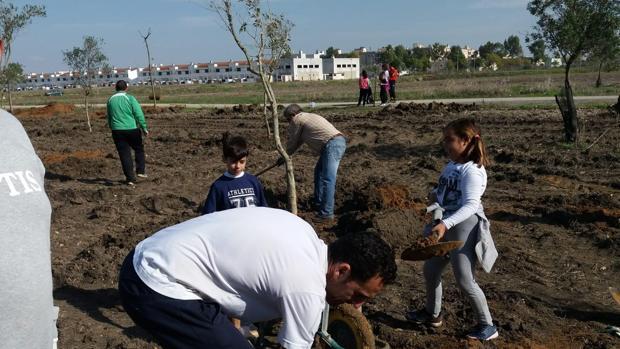Legiones de Leptis ha plantado en Utrera cientos de árboles en los últimos años