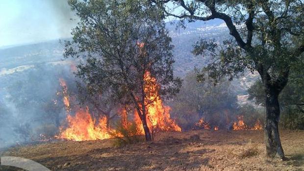 Llamas en del incendio de El Ronquillo, este fin de semana pasado