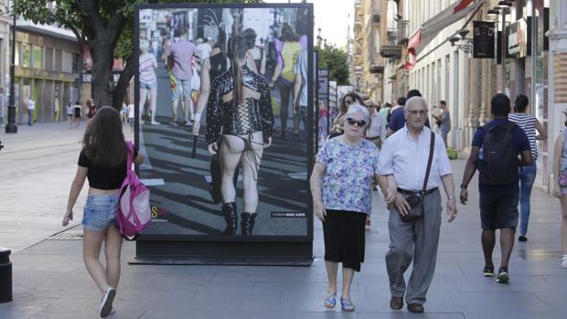 Una de las imágenes de la exposición que se celebra en la Avenida de la Constitución