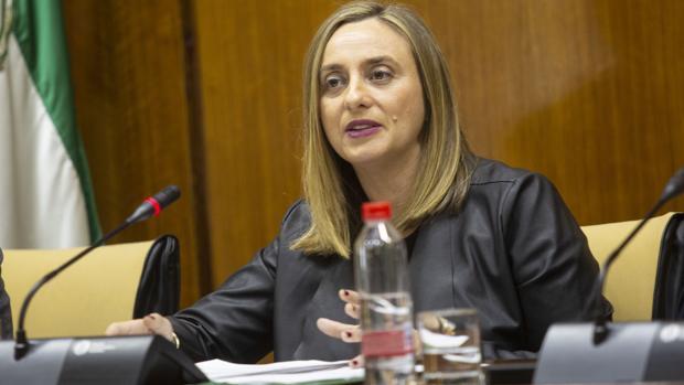 La consejera de Fomento, Marifran Carazo