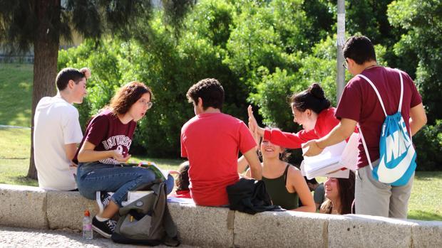 Estudiantes de Selectividad en al campus de la UPO
