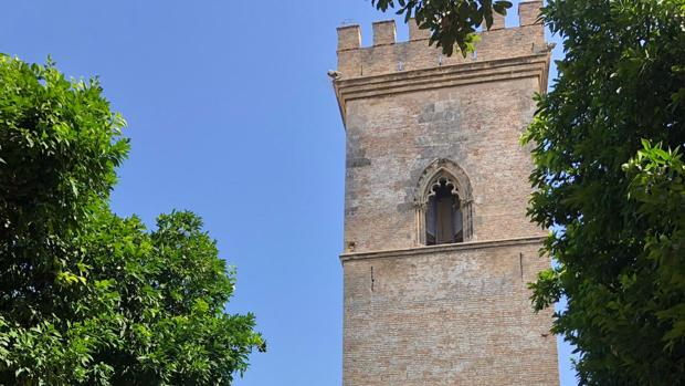 La Torre de Don Fadrique recibirá visitas a partir de 2021