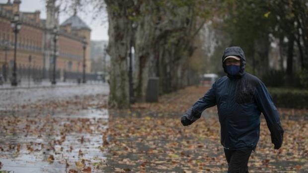 El tiempo en Sevilla: Vientos fuertes y menos frío para el fin de semana