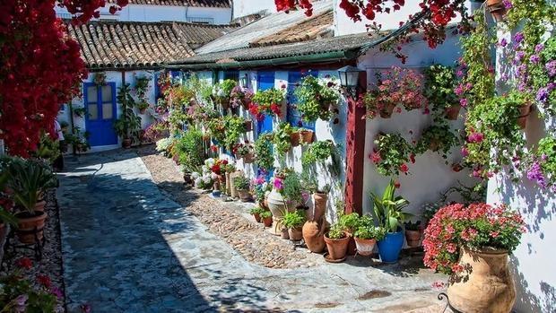 En Mayo El Color Está En Los Patios De Córdoba