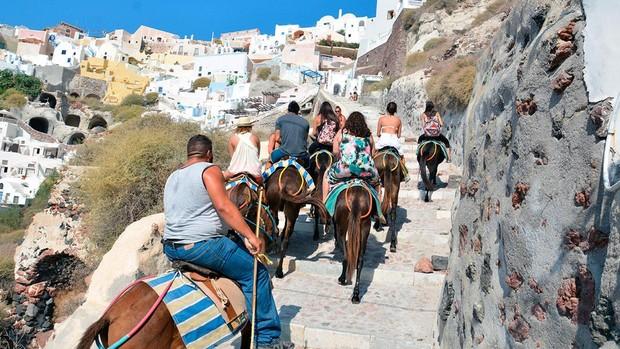 Burros con turistas en las cuestas empinadas de Santorini